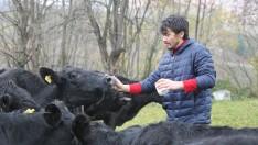 Ordu'da Üniversiteli Gencin Yüzü Hayvancılıkla Güldü
