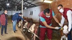 Tarım Bakanlığından Hayvan Yetiştiricilerine Büyük Kolaylık Sağlandı