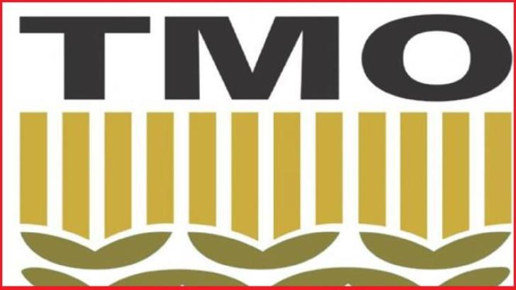 Ordu'da TMO, Fındık Alımlarını Hızlandırıyor
