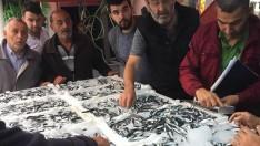 Ordu'da Denetimlerde 2,5 ton Balık Yakalandı