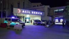 Ordu'da otomobil fındık bahçesine düştü: 8 yaralı