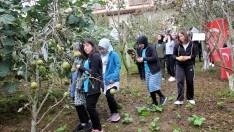 Ordu'da şehitlerin isimlerinin yaşatıldığı meyve bahçesi ilgi görüyor