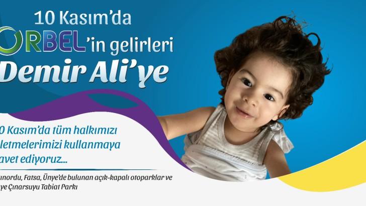 Ordu Büyükşehirden Demir Ali'ye Yardım Eli
