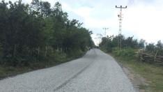 Ordu Büyükşehirden Fatsa'nın Yollarına Asfalt Konforu