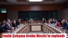 Fındık Çalışma Grubu Meclis'te toplandı