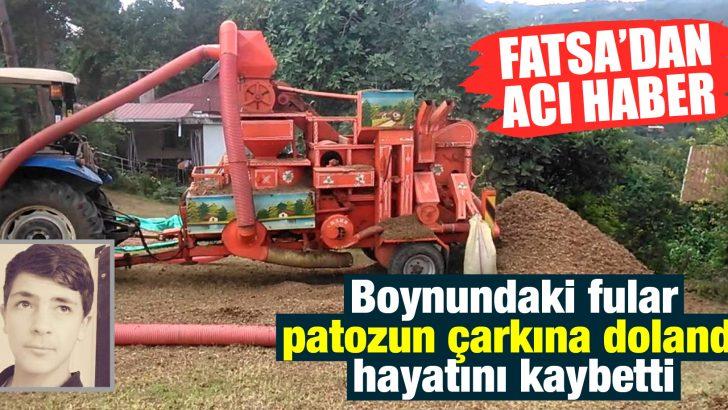 PATOZ CAN ALDI!