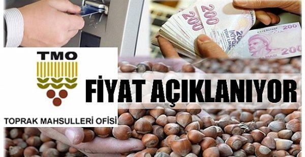 TMO FİYATI YARIN AÇIKLIYOR!