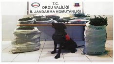 Uyuşturucu Operasyonu Bu Sefer Ulubey'de Yapıldı 2 Gözaltı!