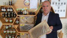 """Arılarda """"varroa"""" hastalığı üreticileri düşündürüyor"""