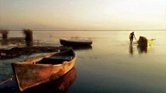 Kızılırmak Deltası'ndaki lagün göllerinde ava sınırlama