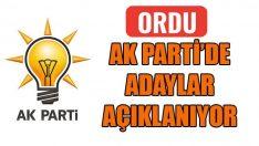 Ak Parti Ordu İlçe Belediye başkan Adayları Açıklanıyor?