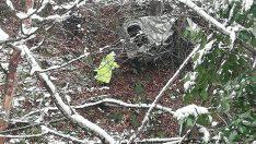 Ordu'da hafif ticari araç uçuruma devrildi: 3 ölü
