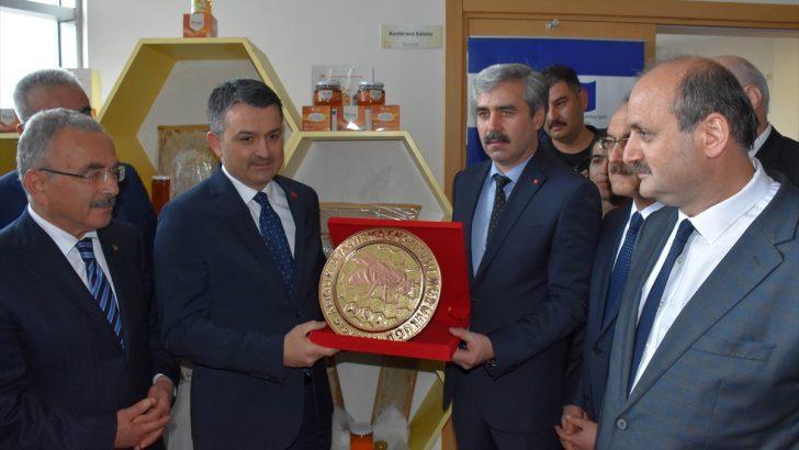 """""""Türkiye arıcılıkta büyük bir merhale katetti"""""""