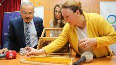 Ev kadınları arı sütüyle ekonomik kazanç sağlayacak