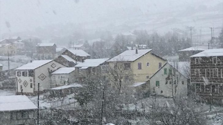 Ordu'da kar yağışı