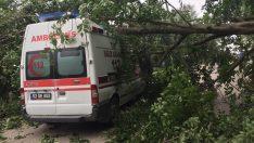 Ağacın üzerine düştüğü ambulansta hasar oluştu
