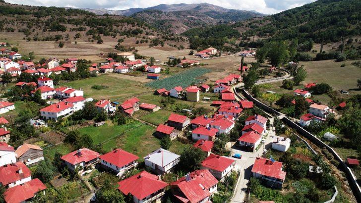 Karadeniz'in doğasını ve mimarisini koruyan mahalle: Yeşilce