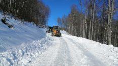 Ordu Büyükşehir, kar'dan kapanan yolları ulaşıma açtı.
