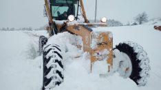 Ordu Büyükşehir Karla Mücadelede Yoğun Mesai Harcıyor