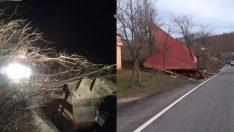 Ordu'da Şiddetli Fırtınadan Ağaçlar Devrildi, Çatı Uçtu