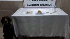 Ordu'da Jandarma ekipleri kubar esrar ele geçirdi