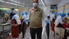 Ordu'da Kafes Balıkçılığı Ekonomiye Katkı Sağlıyor