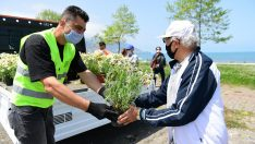 Altınordu Belediyesi 65 Yaş Üstü Vatandaşlara Maske ve Çiçek Dağıttı