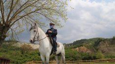 Ordu'da Ali Dayı Göremediği Atına 40 Gün Sonra Kavuştu
