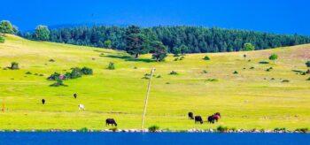 Vali Sonel, Doğal Güzelliği Bozan Çirkinliği Kaldırttı